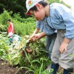 梨花幼稚園で農業体験2